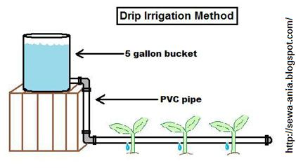 Communication on this topic: How to Install a Drip Irrigation System, how-to-install-a-drip-irrigation-system/